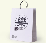 Twisted Paper Handle Bag(5)
