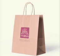 Twisted Paper Handle bag(1)